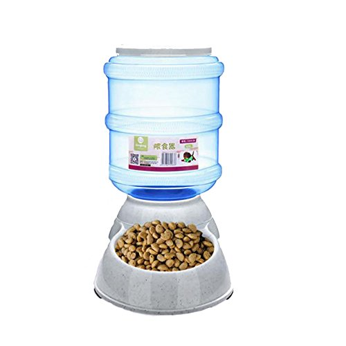 Alimentador Automático para gatos ED-Lumos