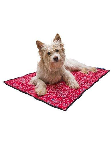 tapete para perros